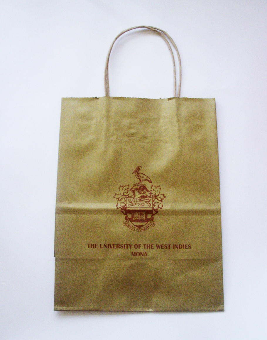 UWI 8X10 METALLIC GOLD KRAFT GIFT BAG